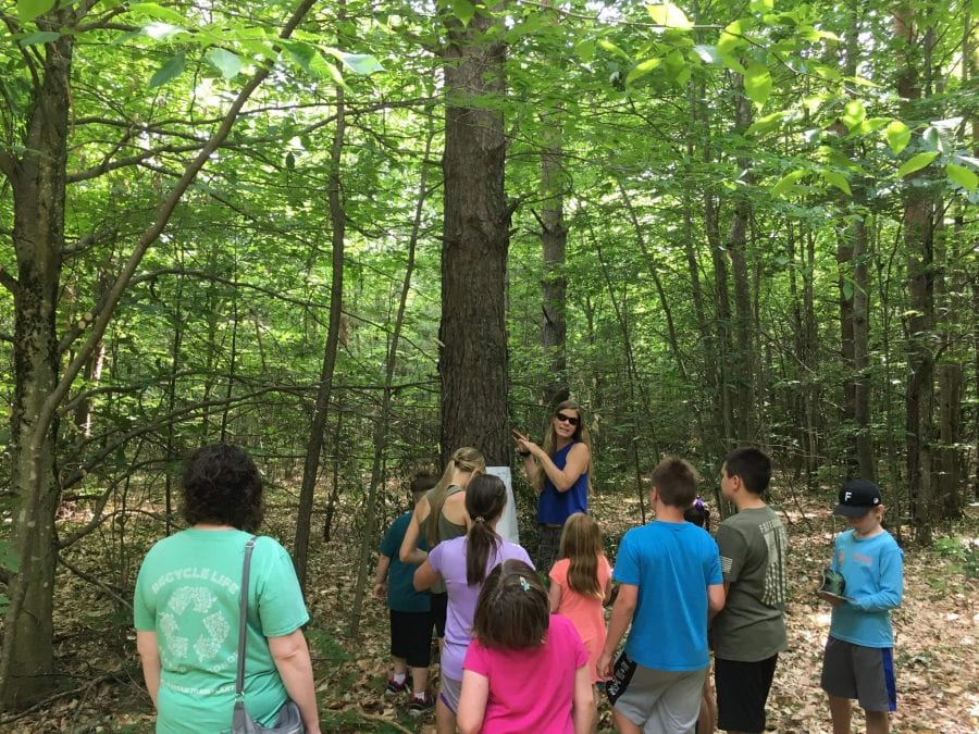 kids in the woods, experiencing nature