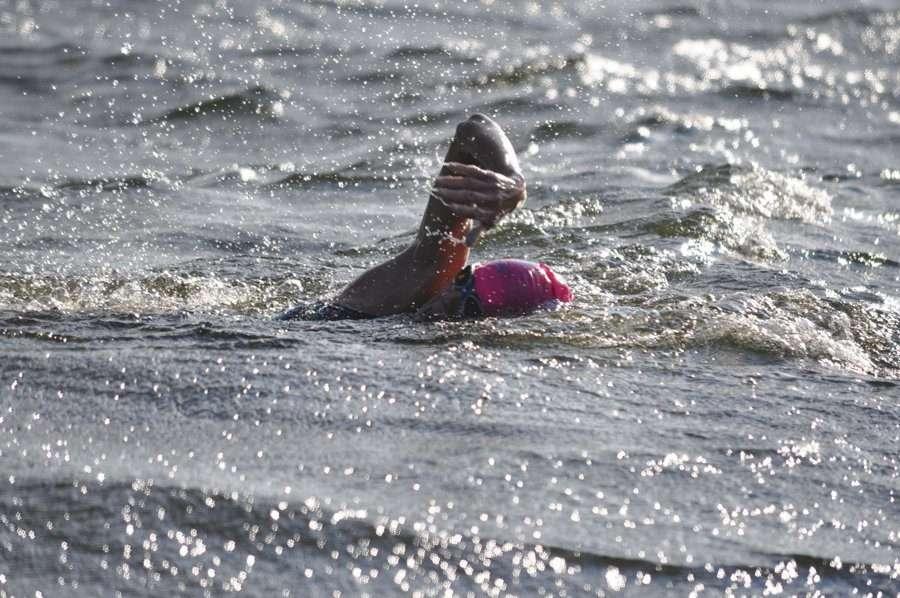 Charlotte Brynn marathon swimmer