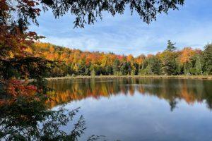Fall foliage pics