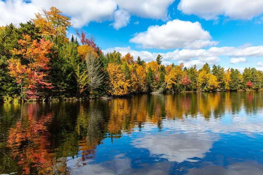 lake kushaqua